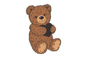 Teddy bear color sketch engraving