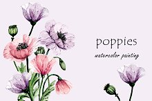 Flowers poppies watercolor set.