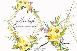 Watercolor Daffodil Bouquet & Frames