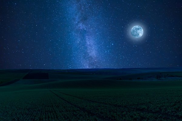 Stock Photos - Nidht landscape with fields and moon