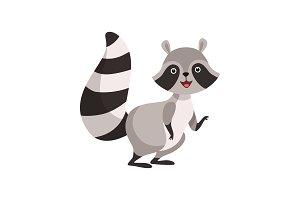 Cute Gray Raccoon, Funny Humanized