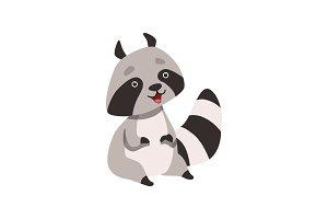 Cute Funny Raccoon, Smiling
