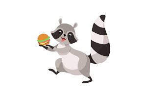Cute Raccoon with Burger, Funny