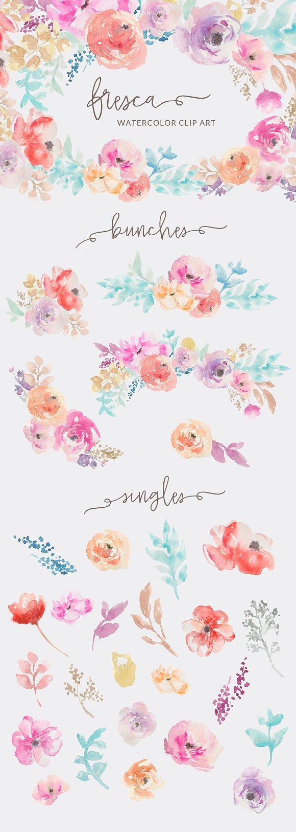 fresca watercolor flower clip art illustrations creative market