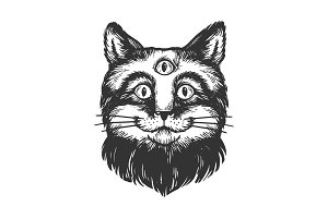 Cat with three eyes engraving