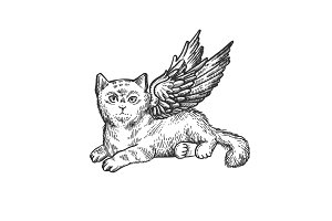 Angel flying kitten sketch engraving