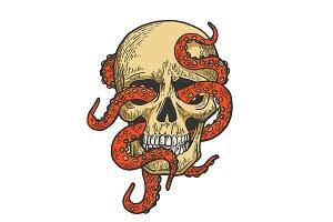 Octopus in human skull color sketch