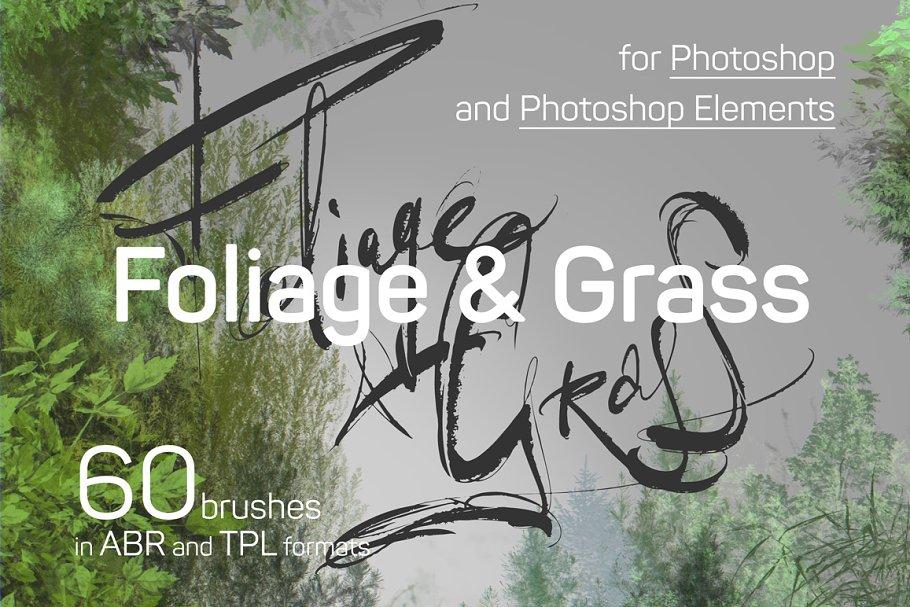 60 Photoshop Foliage brushes ~ Photoshop Add-Ons ~ Creative