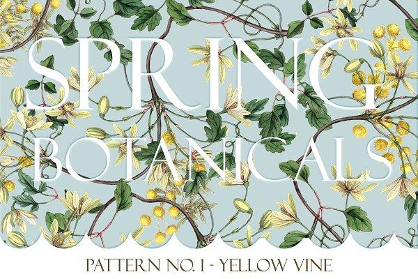 Spring Botanical - Pattern No. 1