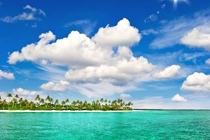 Tropical beach palm trees blue sky