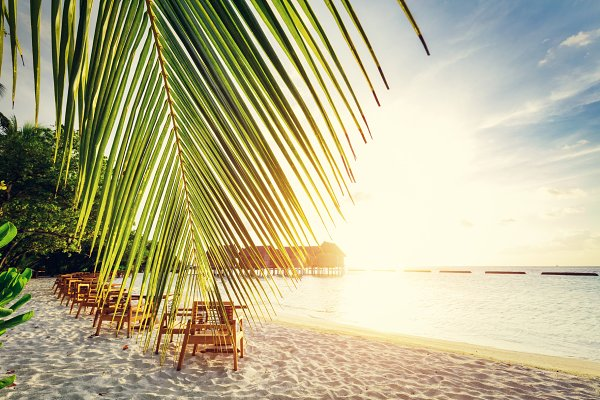 Tropical sandy beach on Maldives.