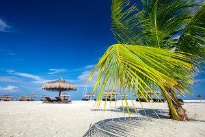 Tropical beach on Maldives Islands.