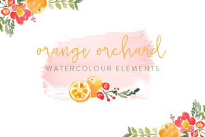 Orange Orchard Watercolor Elements