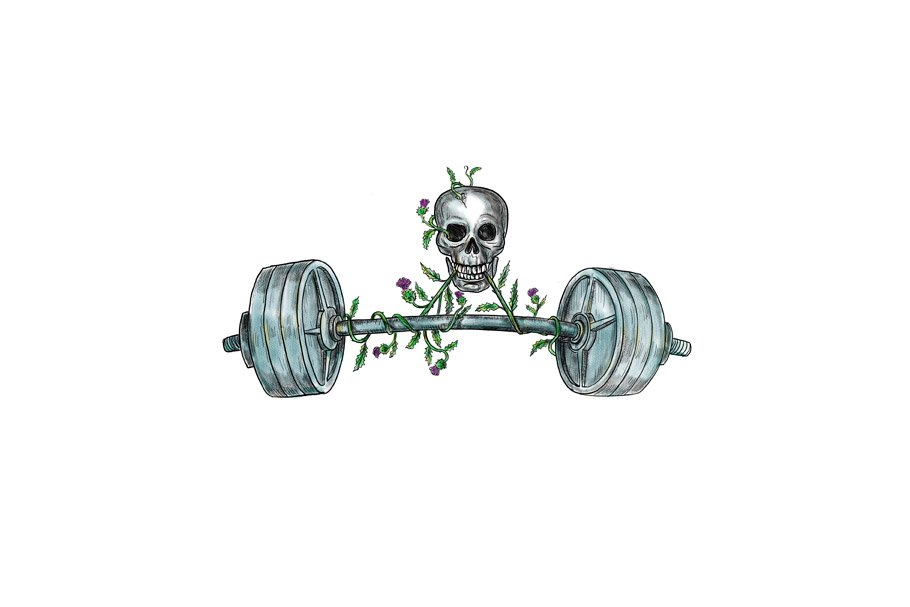 fb82f4405 Skull Lifting Barbell Thistle Tattoo ~ Illustrations ~ Creative Market