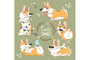 Cute Doggies Corgi PNG
