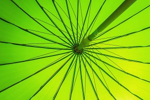 Green parasol background