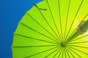 Parasol in green