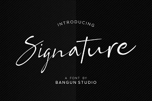 Bs Signature Font (Updated)