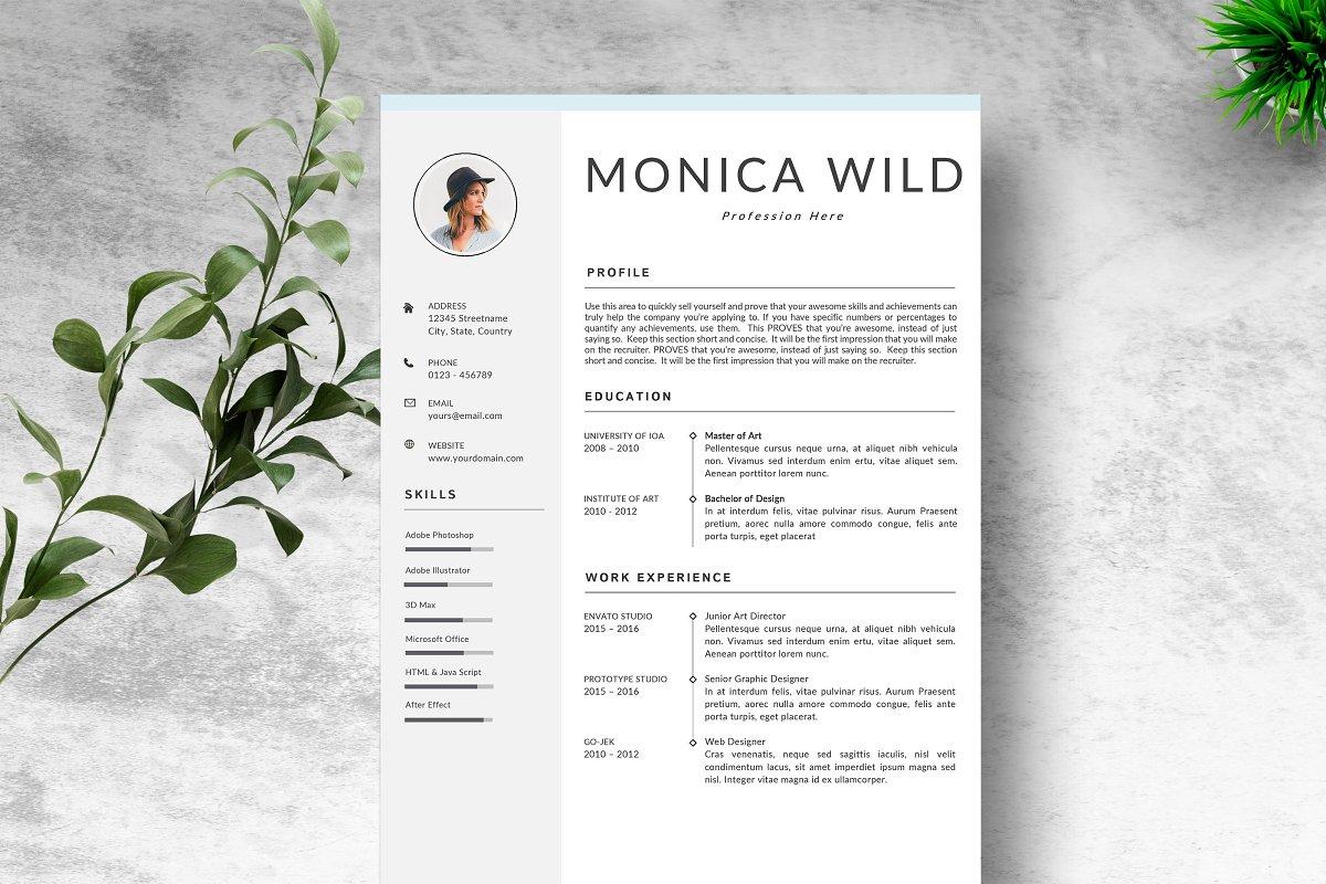 Resume Template | CV Word Mac ~ Resume Templates ~ Creative ...