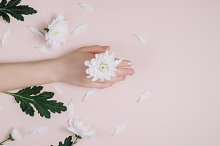 Female hand with white flowers by  in Beauty & Fashion