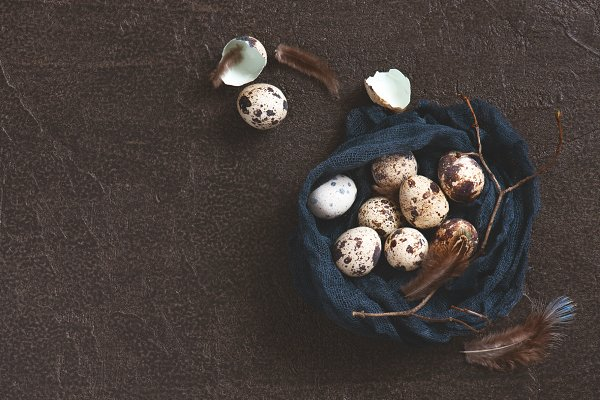 Holiday Stock Photos: AlinaKho - Nest of fabric with small quail eggs