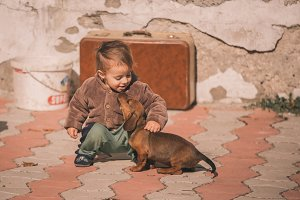 Kid Playing with Puppy