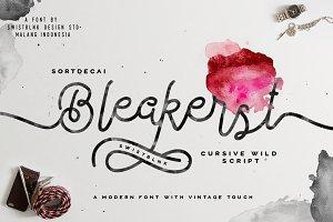 Bleakerst Script (Anniv Free Sale)