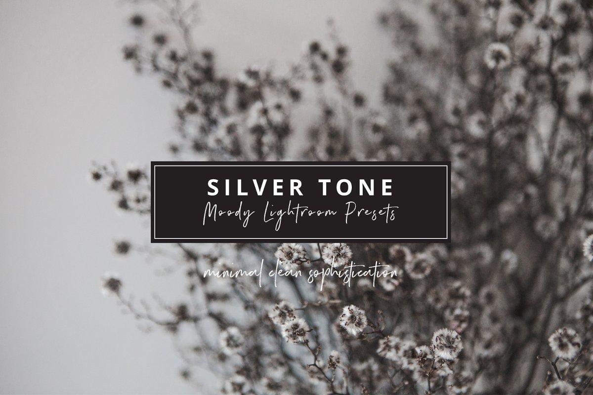 Ash Silver Lightroom Preset Desktop