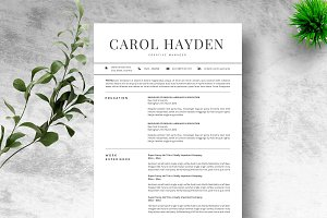 Resume Template 2 pages CV