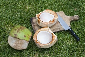 Starting a coconut