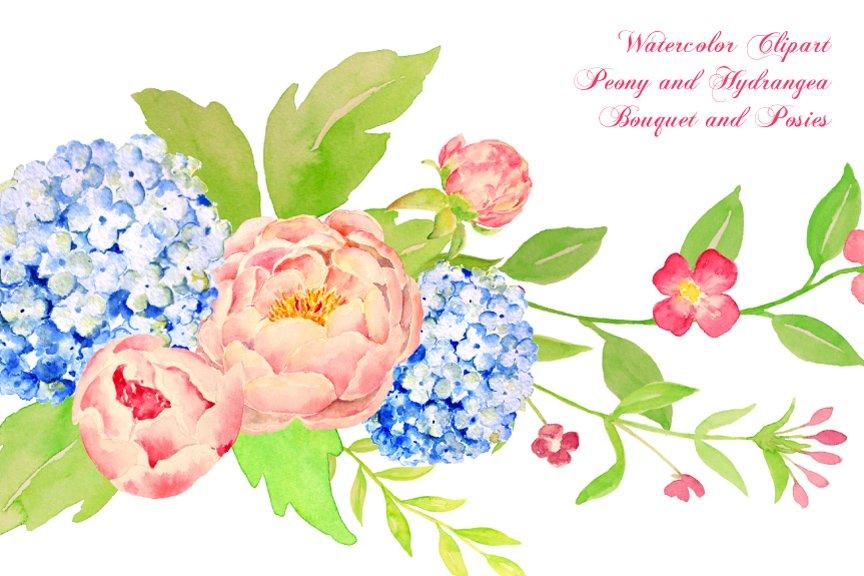 Watercolor Peony Hydrangea Bouquet ~ Illustrations ~ Creative Market
