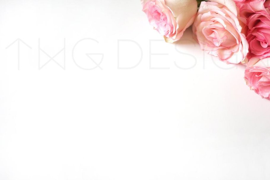 Styled Stock Photo Pink Roses