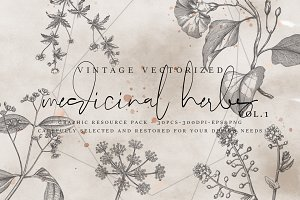 VintageVectorized- Herbs Clipart