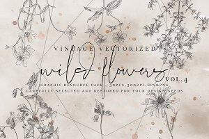 VintageVectorized-Wildflower Clipart
