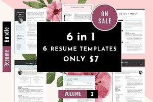 Professional Resume Template Bundle