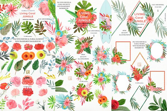 Living Coral Tropical Watercolor in Illustrations - product preview 9