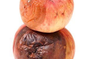 two rotten apple isolated on a white