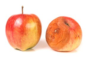 rotten and good apple isolated on