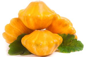 four yellow pattypan squash with