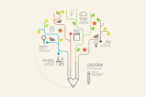 Flat linear Infographic Education