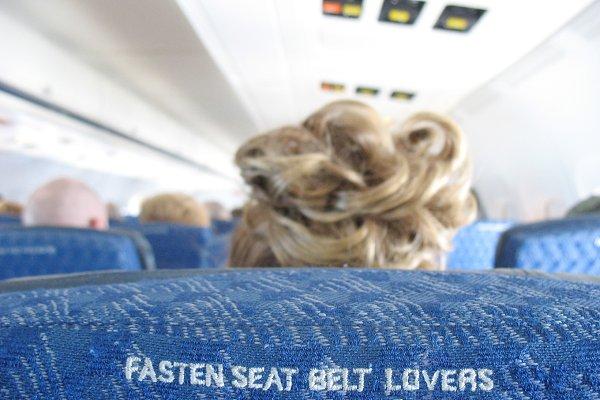 Fasten Seat Belt Lovers