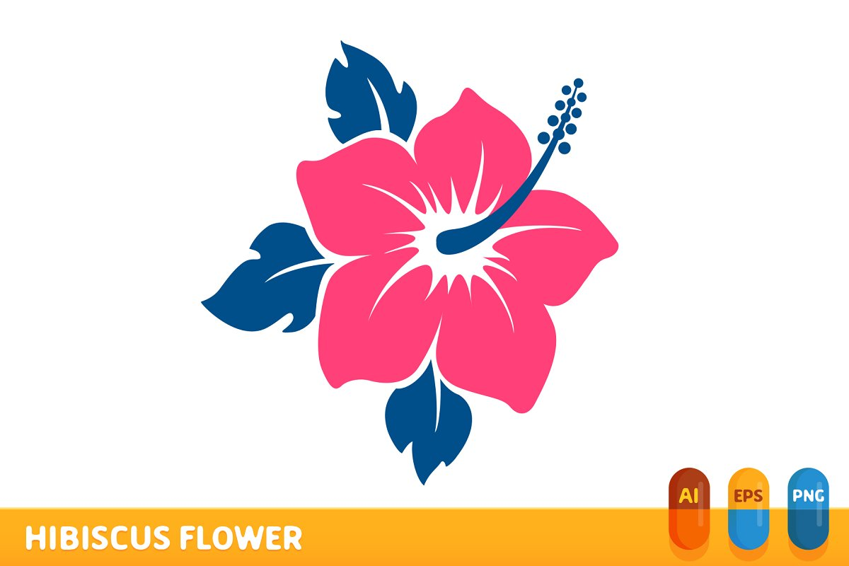 Hibiscus Flower Illustrations Creative Market