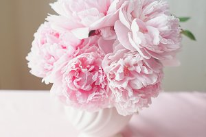 Gorgeous Double Peonies in a vase