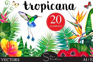 Tropicana vector pack