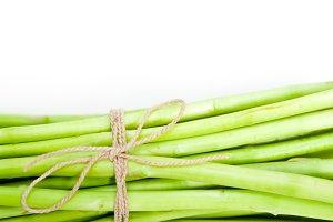asparagus 010.jpg