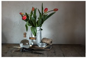 Photo bundle with tulips composition