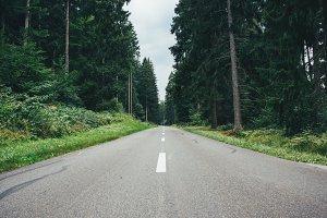 Dark gloomy forest road