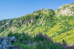 Beautiful landscape panorama