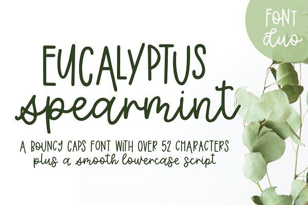 Eucalyptus Spearmint Monoline Script