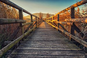Little wood bridge over the lake